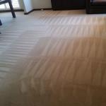 carpet-cleanig