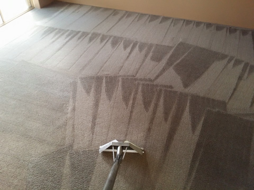 Finished Carpet Cleaning Job By Boas